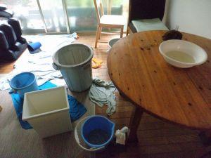 雨漏りと外装改修